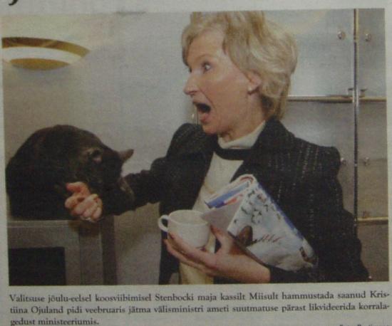 2004. jõulude ajal Stenbocki maja kassilt hammustada saanud Kristiina Ojuland. Foto Postimees, avaldatud ajalehes Vabariik.