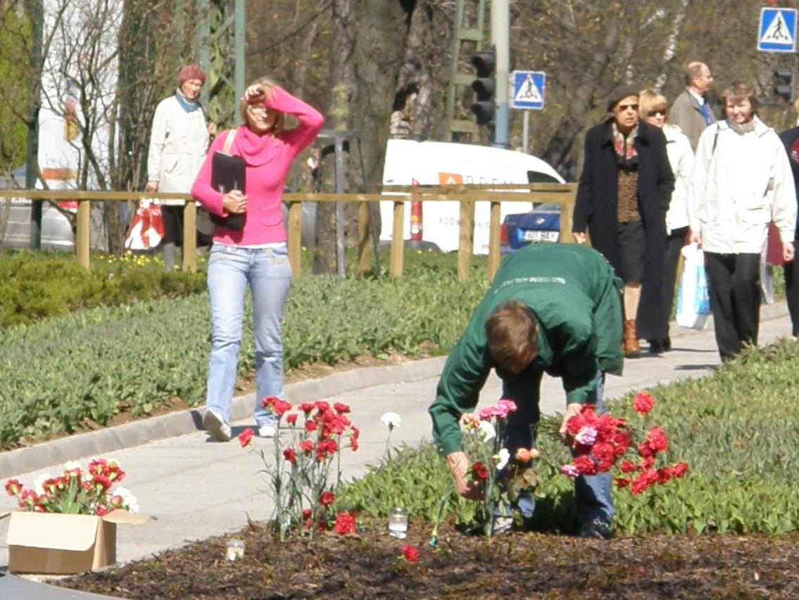 Punased nelgid Tallinnas Tõnismäel: 26. aprill 2008. Kas neid tuuakse sinna või viiakse? Foto Virgo Kruve