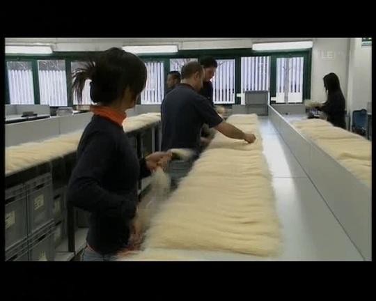 Juuksepikendused on pleegitatud ja blondi värvi juuksed läbivad sorteerimist. Endise omaniku juuksevärv on keemia abil välja pestud.