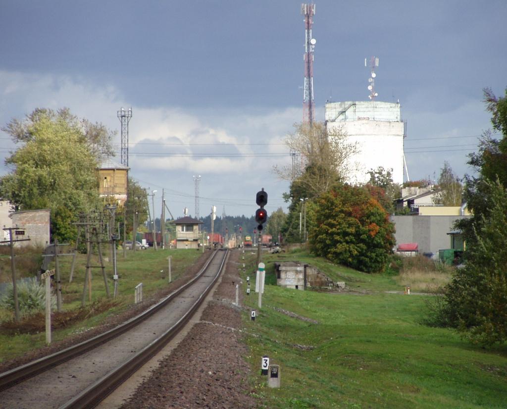 Rakvere raudteejaama suunduvad rööpad pildistatuna Näituse tänava ülekäigu kohalt õnnetuskoha ehk Kalda tänava suunas (umbes 300 m kaugusel). Foto Virgo Kruve 23. september 2009