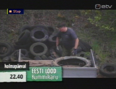 minu eesti metsade koristamine autode rehvid