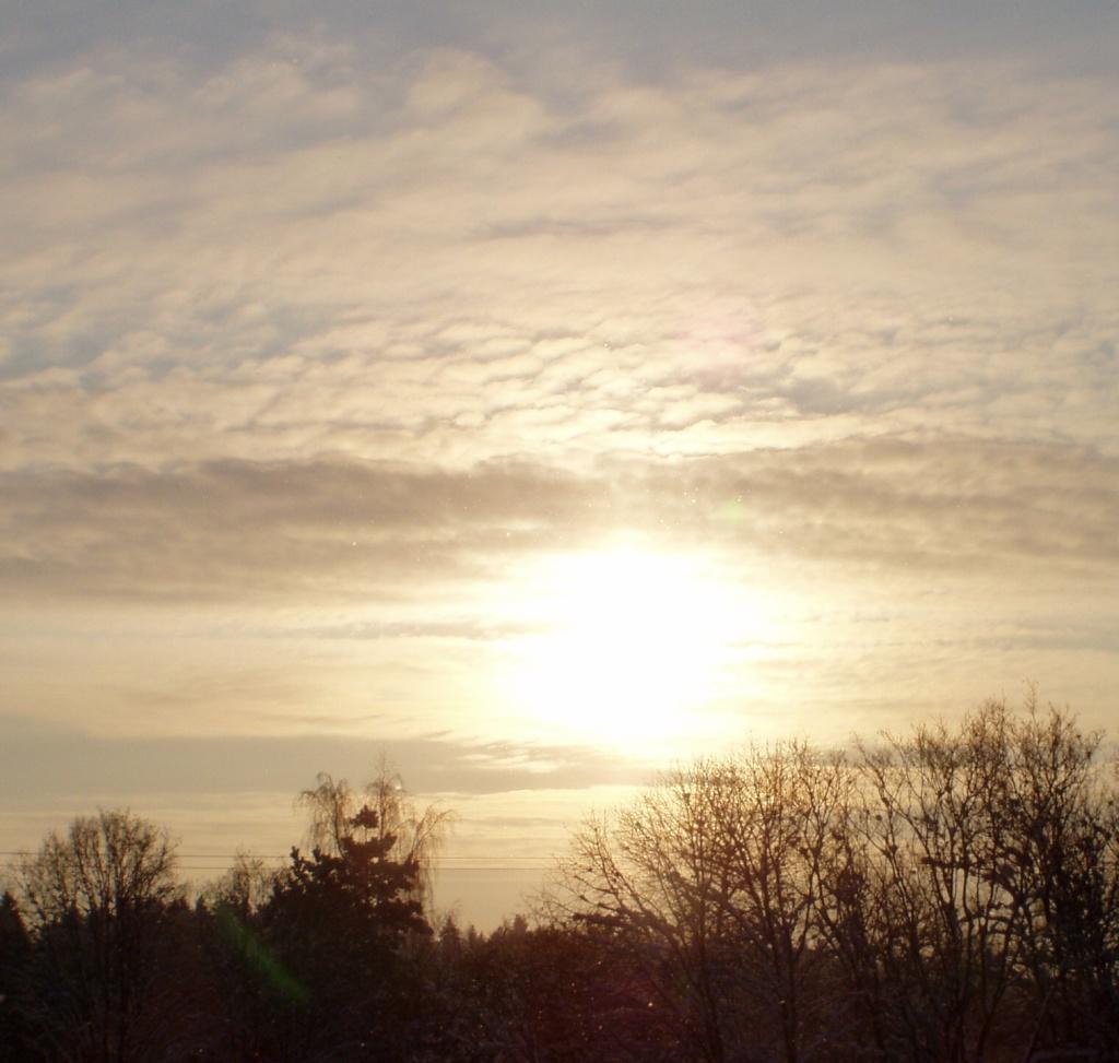 Uue aasta esimene päiksepaiste. foto Virgo Kruve 1.1.2010