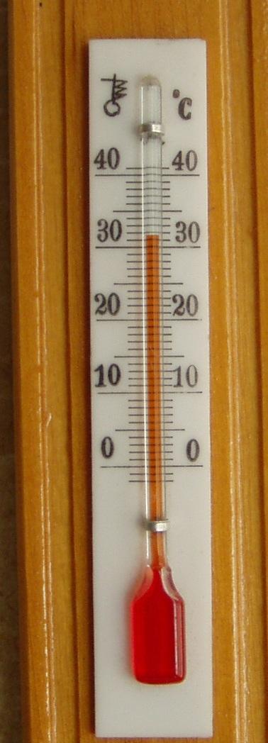 15. juuli 2010 kell 14 ajal on toas 31,5 kraadi sooja. Foto Virgo Kruve