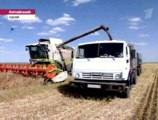 Venemaal koristatakse tatra põllult saaki kombaini ja Kamaz veoautoga. Kaader 10.09.10 PBK