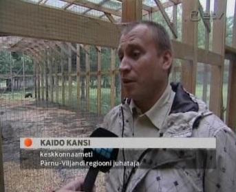 Eestimaa Rahvaliidu liige Kaido Kansi oli Pärnu-Viljandi regiooni keskkonnaameti juht. Eelmise aasta oktoobris kandideeris Eesti Reformierakonna nimekirjas Viljandi linnavolikokku. Kaader ETV 1. juuni 2010